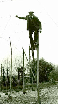 hop man on stilts